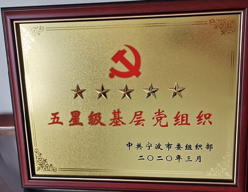 """我司党支部被评定为""""五星级基层党组织"""""""